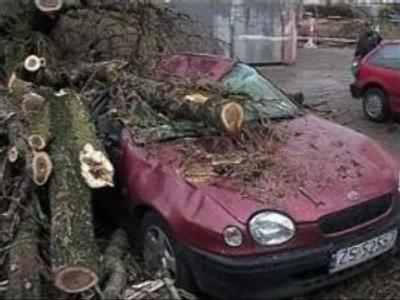 Deadly storm moves east