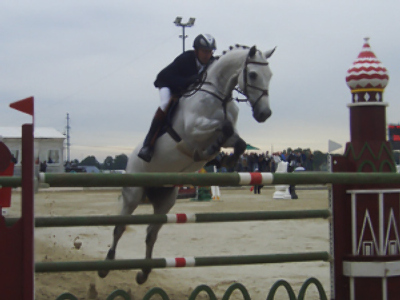 Estonian show jumper best at Moscow Region Governor's Cup