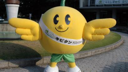 "This handout picture taken by Fukushima prefectural government on September 12, 2012 and received on November 9 shows a grinning bird mascot ""Kibitan"" in Fukushima, northern Japan. (AFP Photo/Fukushima Government)"
