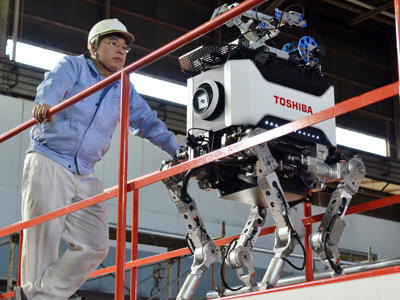 Engineers inspect Toshiba's four-legged robot during a demonstration at Toshiba's technical center in Yokohama, suburban Tokyo on November 21, 2012. (AFP Photo / Yoshikazu Tsuno)