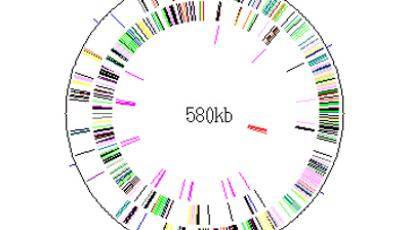 World on a string: DNA to be used for data storage