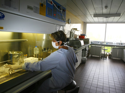 An employee works on a sample analysis in a high-security lab (AFP Photo / Nicolas Tucat)