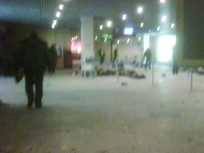 Moscow's Domodedovo Airport after deadly bombing in January, 2011 (Image by RIA Novosti / Valery Yakimenko)