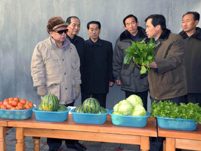Pyongyang poser: Nix nukes for fast food?