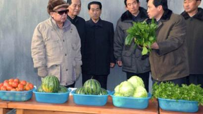 Undated photo, released by North Korea's official Central News Agency, shows leader Kim Jong Il inspecting the Hoesang area farm in Hamhung city in South Hamgyong province (AFP Photo / Kcna Via Kns)