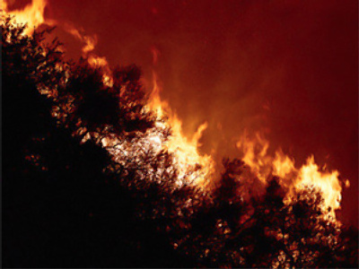 State of emergency declared as forest fires rage in Russia's summer drought