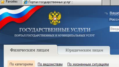 Russia's state services website