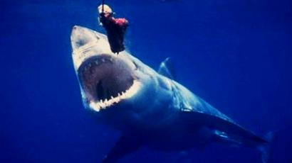Open season on Russian Jaws declared (photo from www.akyla.info)