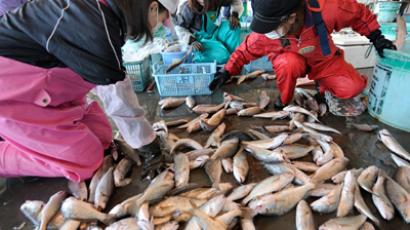 Japanese women sort through freshly caught fish at the Hirakata fish market in Kitaibaraki, Ibaraki prefecture, south of the stricken Fukushima daiichi nuclear power plant number 1 on April 6, 2011 (AFP Photo / Toru Yamanaka)