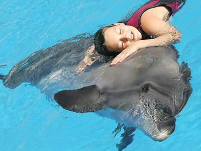 Post-stroke rehab: Turning patients into dolphins