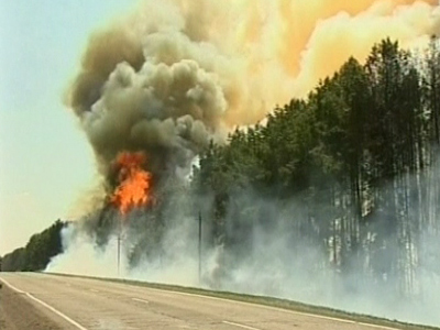 Siberia ablaze: Raging forest fires engulf five Russian regions