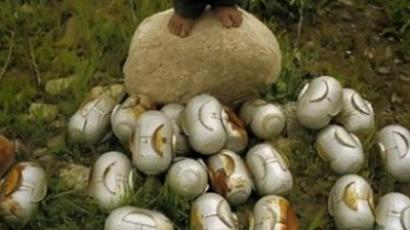"Unexploded cluster ""bomblets"" at the feet of a child (image from avaaz.org)"