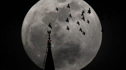 The full moon rises behind a mosque as birds fly in Amman May 5, 2012. (Reuters / Ali Jarekji)