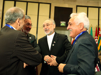 Iran's Foreign Minister Ali Akbar Salehi (2nd R) talks with other attendees before the start of the Organisation of Islamic Cooperation (OIC) summit in Cairo February 6, 2013.(Reuters / Asmaa Waguih)