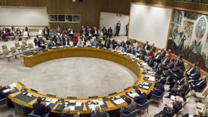 A United Nations Security Council meeting. (AFP Photo / Michael Nagle)