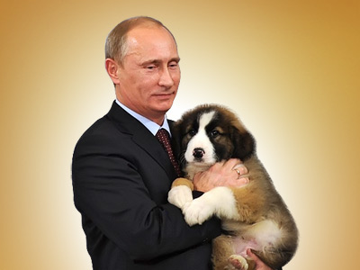 Wanted: name for Putin's new pet