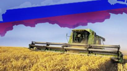 Russia considering restrictions on grain exports
