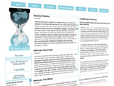 (A screenshot from http://wikileaks.org)