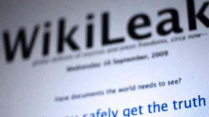 "Russia shrugs off Wikileaks ""petty thief"""