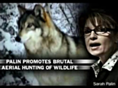 Wildlife defenders new headache for McCain & Palin