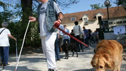 A blind man walks with his guide dog (AFP Photo/Loic Venance)