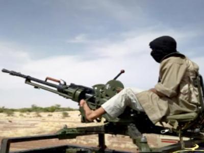 Al-Qaeda in Africa stronger than suspected – Russian envoy