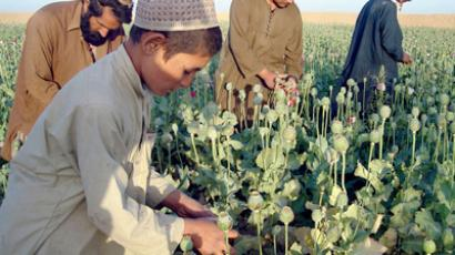 Afghanistan alone can't curb world demand for opium – anti-drugs minister