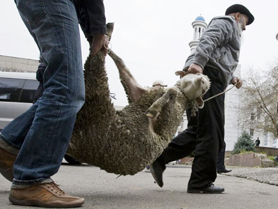 Moscow mayor says Muslim animal slaughter may be sacrificed