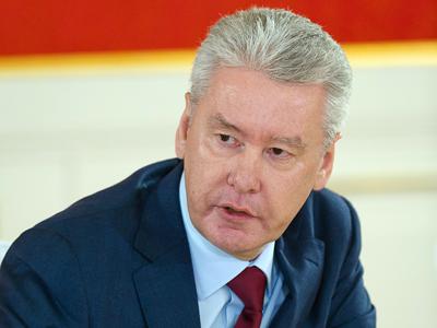 Sergey Sobyanin (RIA Novosti / Denis Grishkin)