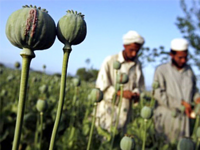 Russia lashes out at NATO for not fighting Afghan drug production