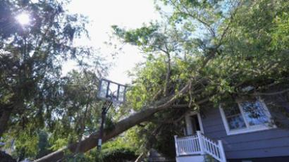 A tree brought down by Hurricane Irene leans against a house on August 29, 2011 in Manasquan, New Jersey (Michael Loccisano / Getty Images / AFP)