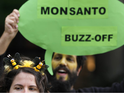 Monsanto rider: New bill could make biotech companies immune to courts