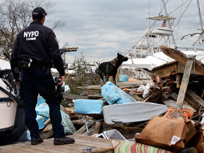 NYPD loses crucial evidence, guns and drugs to Sandy
