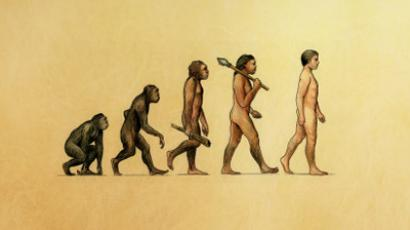 Consequences of evolution