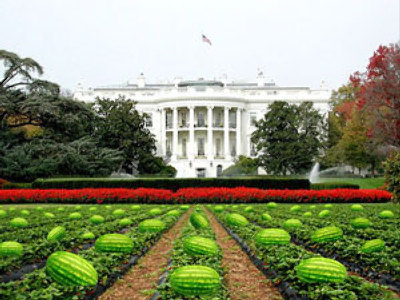 US Mayor to resign over racist watermelons