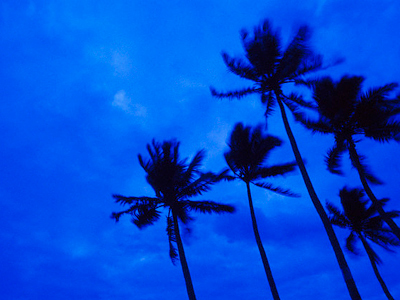 New tropical storms hit US