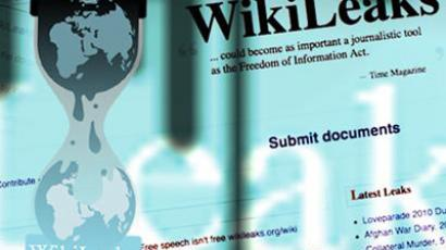 WikiLeaks shut down by American hackers