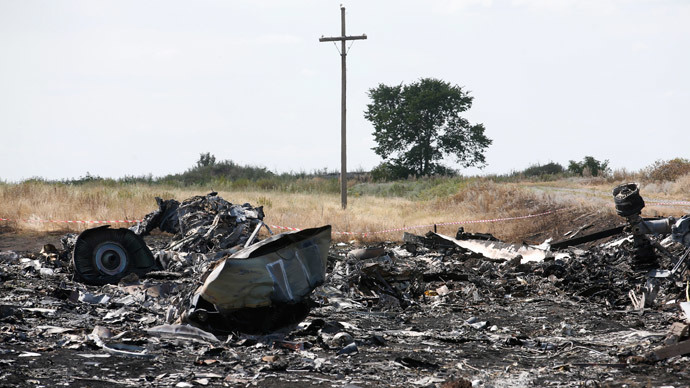 Debris lies at the crash site of Malaysia Airlines Flight MH17 near the village of Hrabove (Grabovo), Donetsk region July 21, 2014. (Reuters / Maxim Zmeyev)