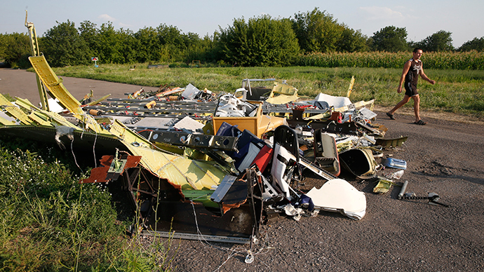 A local resident walks past debris at the site where Malaysia Airlines flight MH17 crashed, near Petropavlivka village in the Donetsk region July 23, 2014 (Reuters / Maxim Zmeyev)
