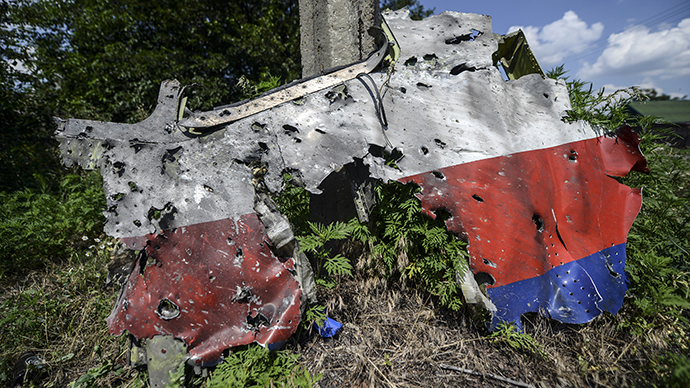 A part of the fuselage of the downed Malaysia Airlines flight MH17 is pictured in a field near the village of Grabove, in the Donetsk region, on July 23, 2014 (AFP Photo / Bulent Cilic)