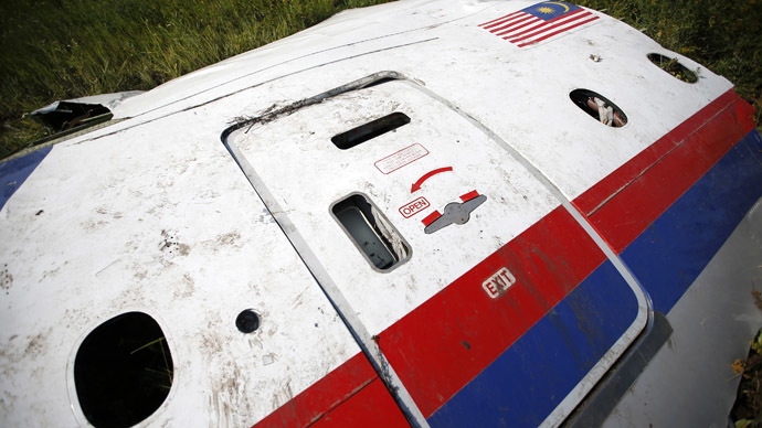 A piece of the wreckage is seen at a crash site of the Malaysia Airlines Flight MH17 near the village of Petropavlivka (Petropavlovka), Donetsk region July 24, 2014. (Reuters/Maxim Zmeyev)