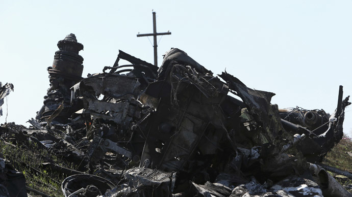 Parts of wreckage are seen at the site where the downed Malaysia Airlines flight MH17 crashed, near the village of Rozsypne (Rassypnoye) in Donetsk region, eastern Ukraine August 1, 2014. (Reuters)
