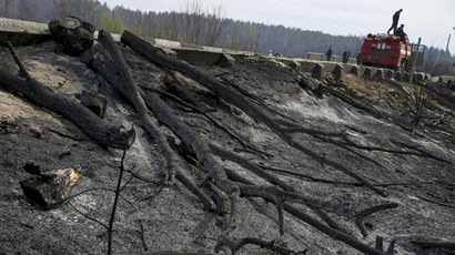 'Each fire around Chernobyl re-mobilizes poison'