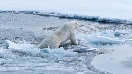 "رصد صدع جليدي ضخم و""خطير""!"