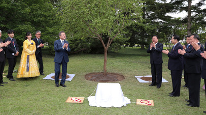 Глава Южной Кореи посадил в Пхеньяне дерево на память о визите