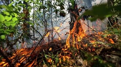 В Свердловской области отменили противопожарные режимы