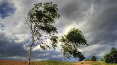 Синоптики предупредили об урагане в Свердловской и Челябинской областях 11 октября