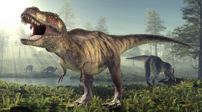 Тест RT: что вы знаете о динозаврах?
