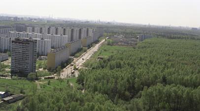 ОНФ разработал закон о расширении площади «зелёных щитов»