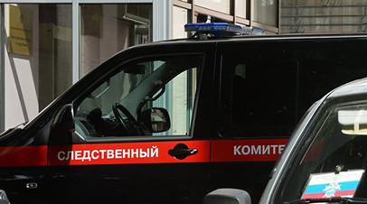 В Калининграде проводят проверку сообщений о нападении собак на ребёнка